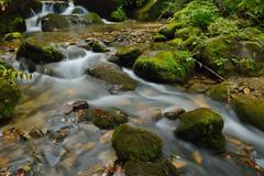 Stock Photo of creek