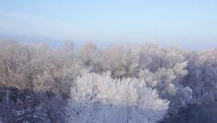 Winter river with snow covered forests on side Stock Footage