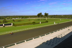 Horses on Keeneland race track Stock Footage