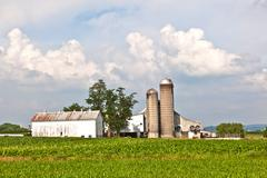 farm house with field and silo - stock photo