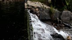 Steavenson Falls Stock Footage