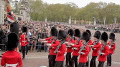 Royal Guard Change Stock Footage