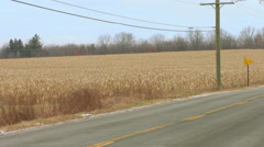 Close view of bus passing cornfield in Fall 4K Stock Footage