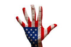 palm flag united states - stock illustration