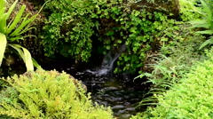 Ornamental garden stream flowing fresh water Stock Footage