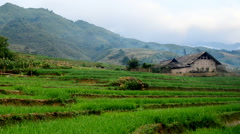 Zoom Out of Farm House with Rice Terraces in Valley -  Sapa Vietnam Stock Footage