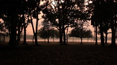Morning Brisk Walking In The Park Stock Footage