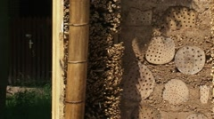 Pan bee hotel an artificial bee nesting wall with drilled logs and hollow reed Stock Footage