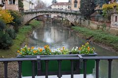 St. michael's bridge with the retrone river in the city of vicenza Stock Photos