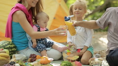 Friendly family of four on picnic Stock Footage