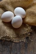 Bio eggs Stock Photos