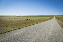 gravel road in the countryside - stock photo