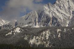 Fresh snow on mountainside Stock Photos