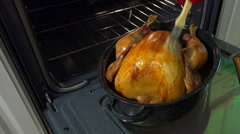 Chef basting a golden turkey in roaster Stock Footage