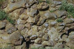 Rock igneous - stock photo