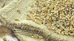 Heap of green spelt (not loopable) Stock Footage