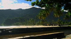 Caribbean Beach Lush stream going to sea in shot Stock Footage