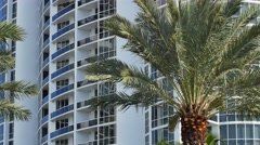 Building tilt up with palm tree in foreground 4k Stock Footage