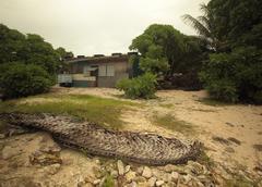 Kirtibati, Tararwa Island - stock photo