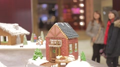 Minature gingerbread house - cinematic depth of field Stock Footage
