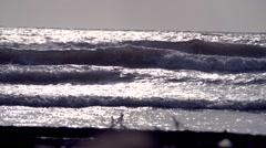 Caribbean waves at sunrise moody 01 Stock Footage