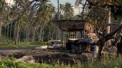 Caribbean Roadside shack Palm Trees Car Passes 02 Stock Footage