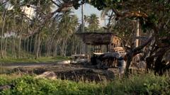 Caribbean Roadside shack Palm Trees Car Passes 01 Stock Footage