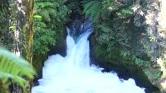 Tutea Falls. Kaituna River. New Zealand Stock Footage