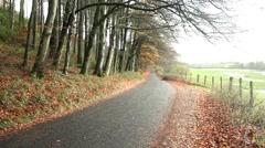Beautiful autumn road, fall season, golden leaves Stock Footage