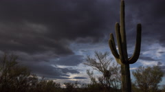 4K Dramatic Arizona Saguaro Landscape Time Lapse Stock Footage