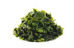 Seaweed on white background Stock Photos