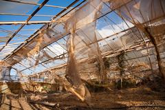 Broken and abandonned Greenhouse Stock Photos