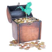 wooden money chest filled with coins and a money tree - stock photo