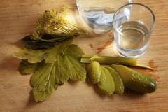 Traditional russian appetizer to vodka Stock Photos