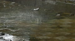 Abandoned factory ruins in raining day , leaking water Stock Footage