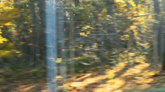 blurred car trip in sunny autumn forest road - stock footage