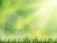 Close-up look at natural grass background Stock Illustration