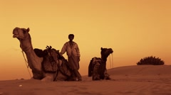 Warm Cinematic shot of young desert safari  in middle of south desert Sahara Stock Footage