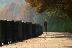 Autumn walk - stock photo