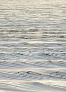 fields are covered with foil to protect plants from frost - stock photo