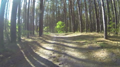Running on  forest autumn road. POV stabilized  clip - stock footage