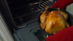 Taking a golden roast turkey out of oven. Stock Footage