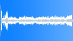 Pad Space Bird Sound Effect