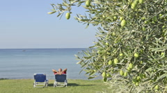 Relaxing by the sea Stock Footage
