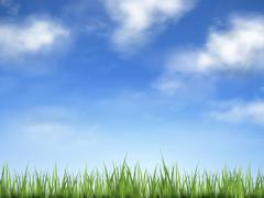 blue sky and field of green grass - stock illustration