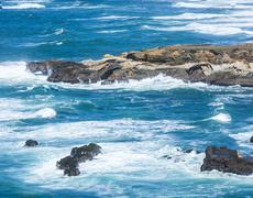 Wild pacific coast at point arena Stock Photos