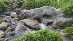 Natural waterway with big rock Stock Footage