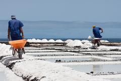 workers with wheelbarrow at salt extraction la palma, canary islands - stock photo