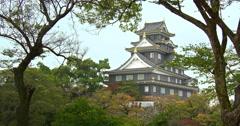 Okayama castle in fall Stock Footage