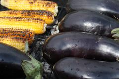Barbecuing vegetables on charcoal fire closeup image. Stock Photos
